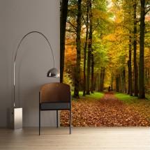 Wallpaper Autumn Road